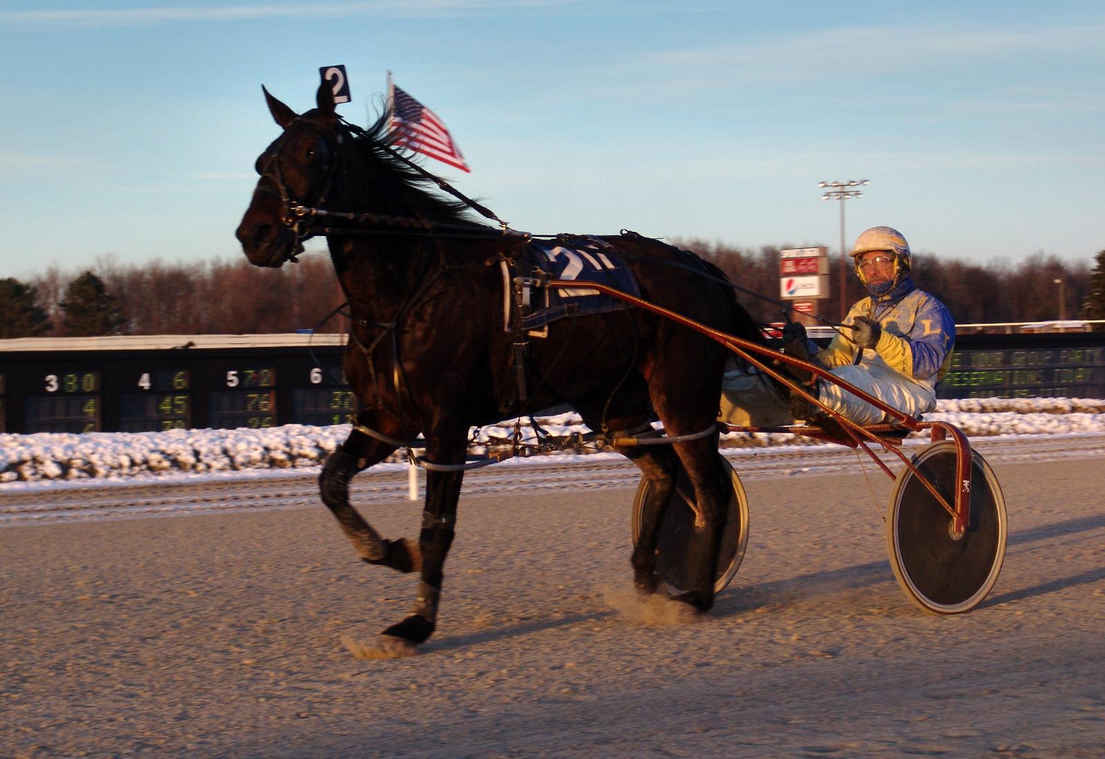 Damit das Pferd auch mal wieder in einen Anderen Zusammenhang als Lasagne gesehen wird! CMCoolidge, Flickr, CC BY 2.0